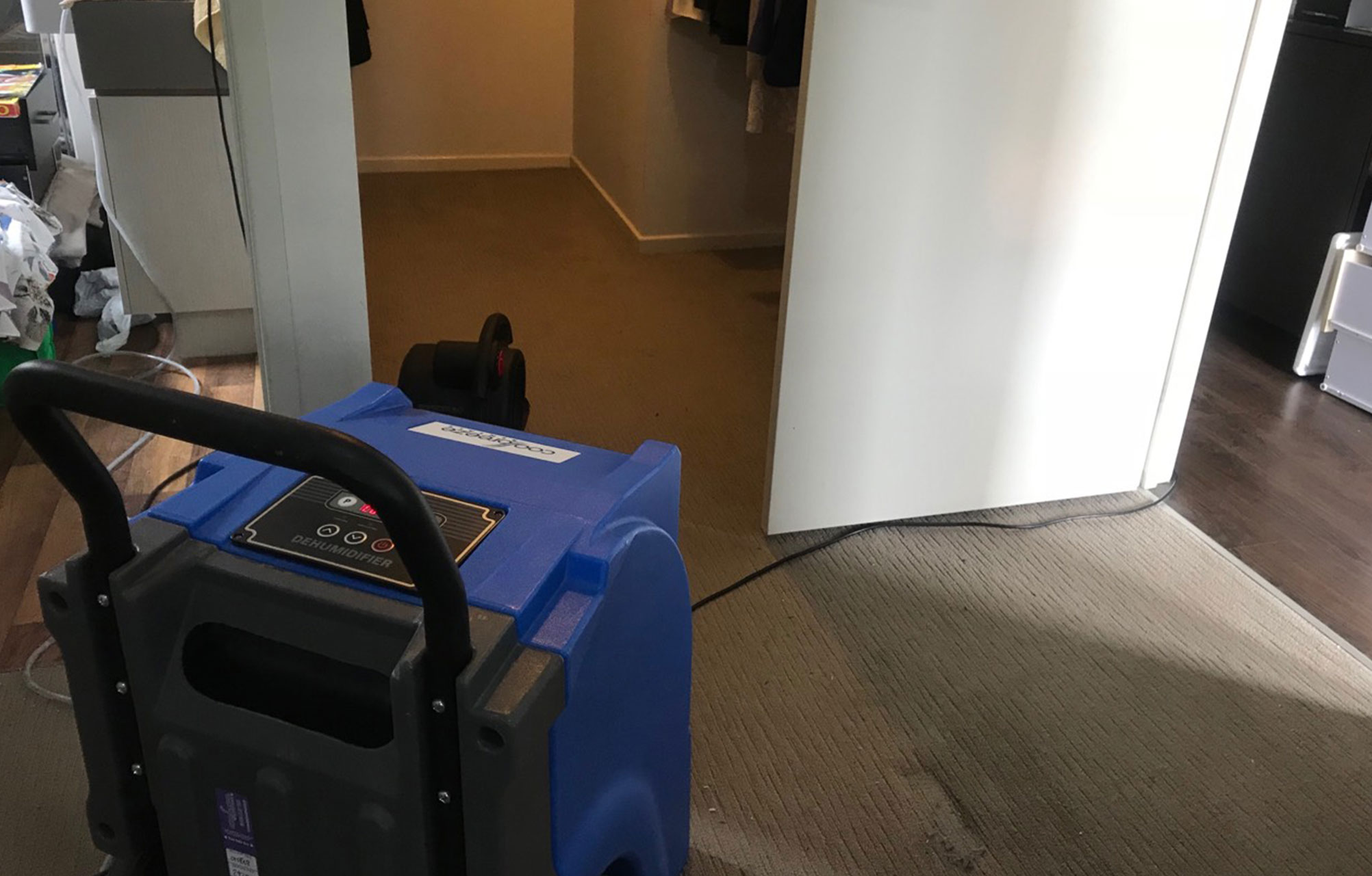 https://www.steamfreshcarpetcleaning.com.au/wp-content/uploads/2019/02/Flood-Damage-Restoration-2.jpg